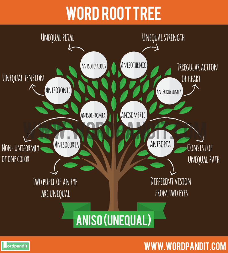 Aniso Root Word: Learn words related to word root Aniso