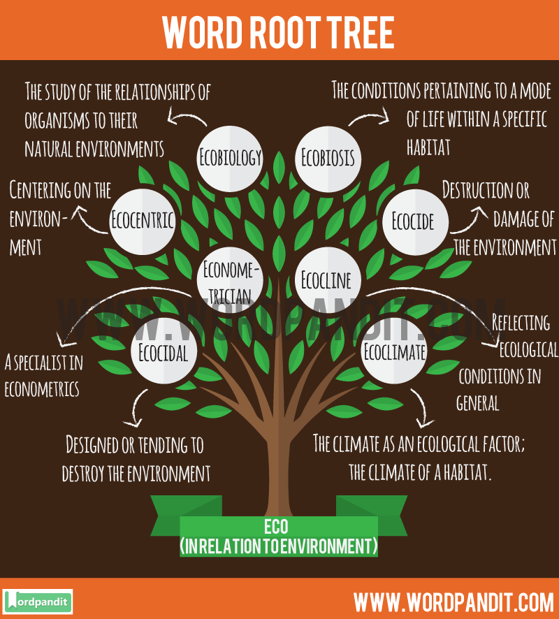 Eco- Root Word: Learn words related to word root Eco-