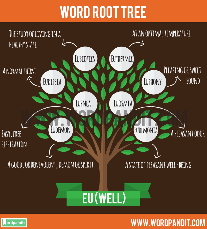 List of Words based on Eu- Root Word with their meaning