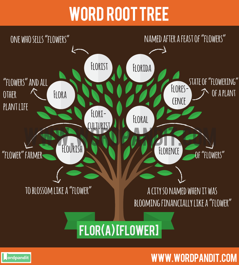 Flor(a) Root Word: Learn words related to word root Flor(a)