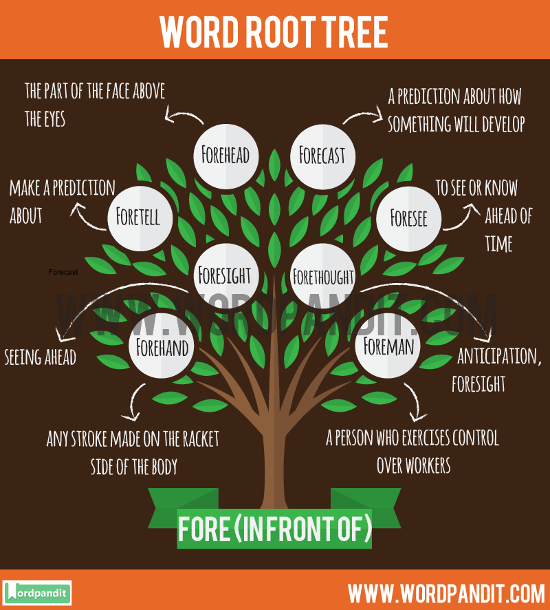 Fore Root Word: Learn words related to word root Fore