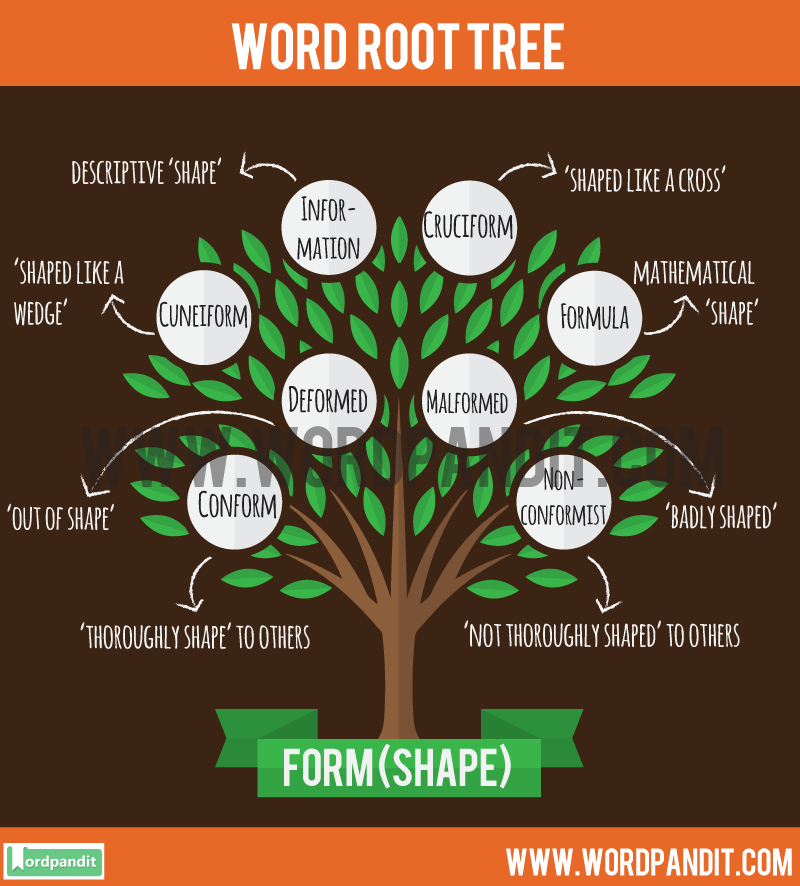 Form Root Word: Learn words related to word root Form