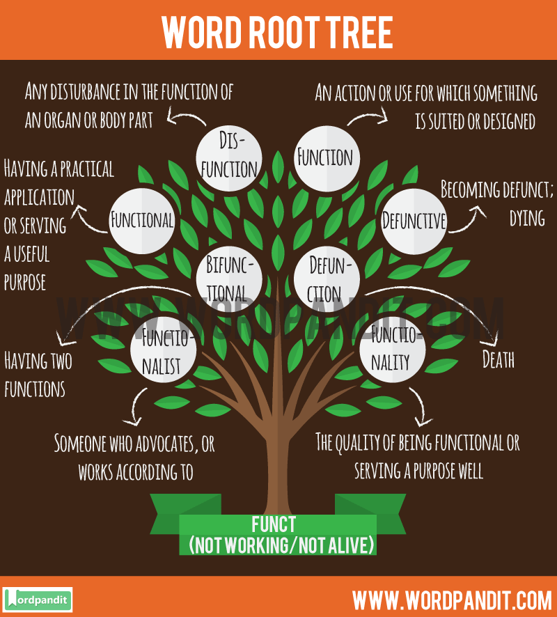 Funct Root Word: Learn words related to word root Funct